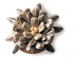 Sunflower Seed Pin