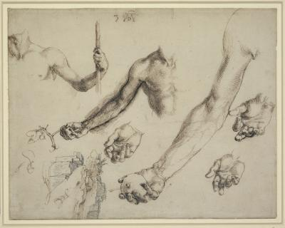 Studies for Adam and Eve