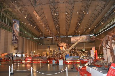 "Overview of ""The Giga Dinosaur Exhibition 2017"" at the Makuhari Messe Convention Center, Chiba City Japan, July 13, 2017"