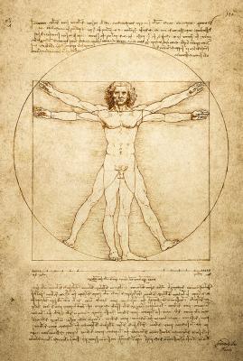 Leonardo da Vinci's Vitruvian Man  Image Courtesy: Grande Exhibitions