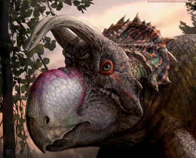 30-NMMNHS-Paleoart 2018-Ava�, portrait of a new species of ceratopsian dinosaur. Artwork by Brian Engh, dontmesswithdinosaurs.com, commissioned by the Western Science Center.