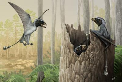 30-NMMNHS-Paleoart 2018- A mob of Dimorphodon, an early Jurassic pterosaur. Digital painting by Gabriel Ugueto.