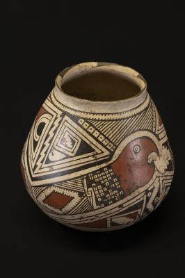 Casas Grandes Jar