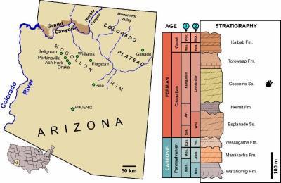 30-NMMNHS-Map of Arizona