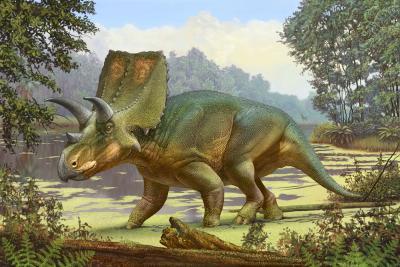 Sierraceratops