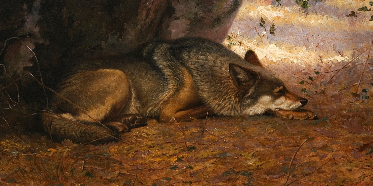 Wild at Heart: Ernest Thompson Seton