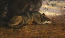 The Sleeping Wolf